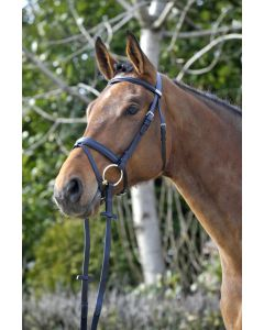 Stubben Waterford Flash Snaffle Bridle Black