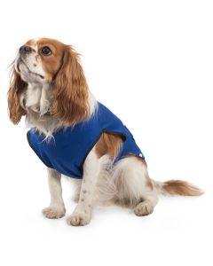 Ancol Dog Cooling Coat Blue