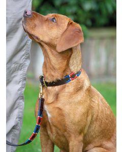 Digby & Fox Drover Polo Dog Collar