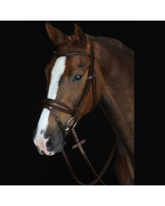 Collegiate Mono Crown Padded Raised Flash Bridle Brown
