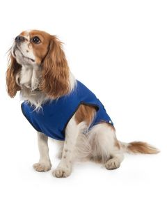 Ancol Dog Cooling Coat Blue