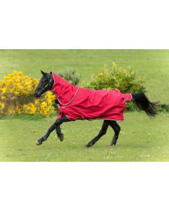 Horseware Amigo Hero ACY Plus Mediumweight 200g Turnout Rug Red/White