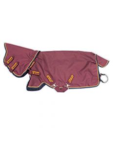 Horseware Amigo Hero ACY Plus 100g Turnout Rug Burgundy/Orange