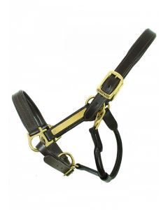 Horseware Amigo Padded Leather Headcollar Brown