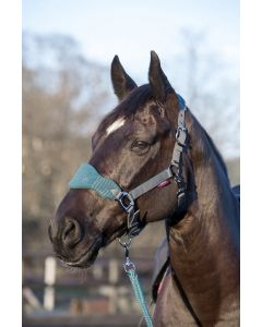 LeMieux Vogue Fleece Headcollar With Leadrope Peacock/Grey