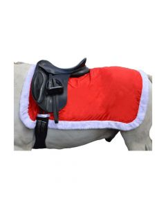 Hy Equestrian Christmas Santa Exercise Sheet