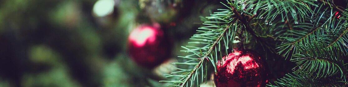 Christmas Gifts Chelford Farm Supplies